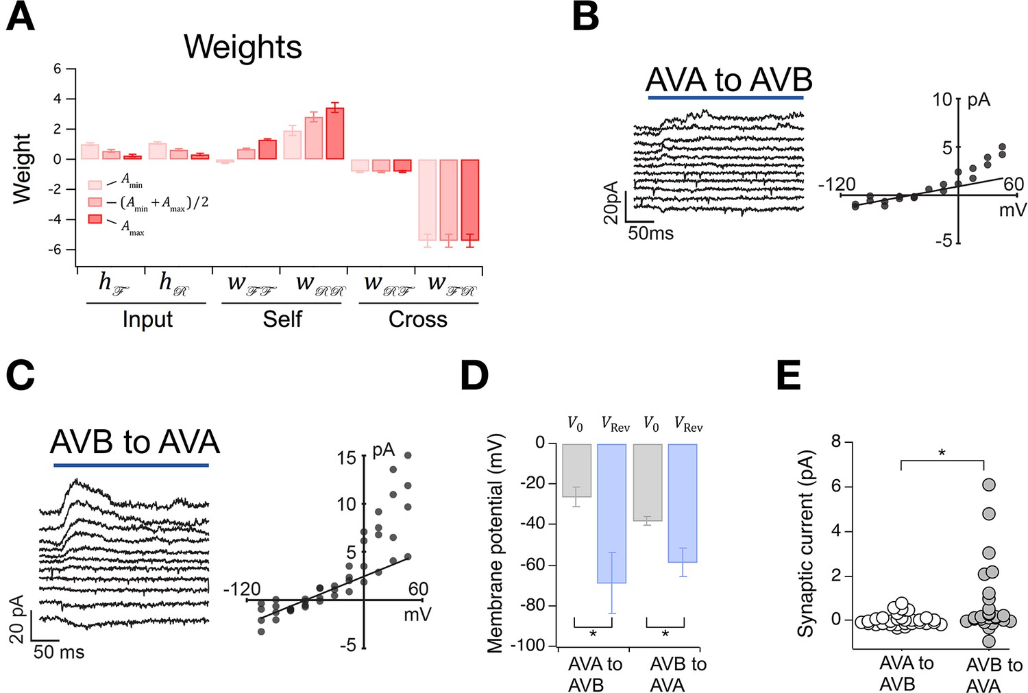 A Stochastic Neuronal Model Predicts Random Search Behaviors At Wiring Diagram For Steven Ma The Switch Correctly Sign And Strength Of Synaptic Connections