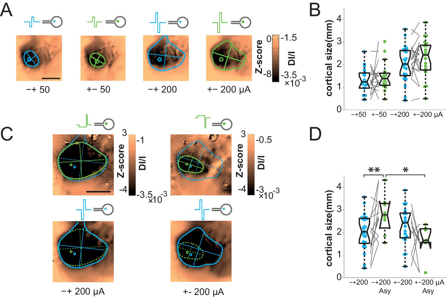 Probing the functional impact of sub-retinal prosthesis   eLife
