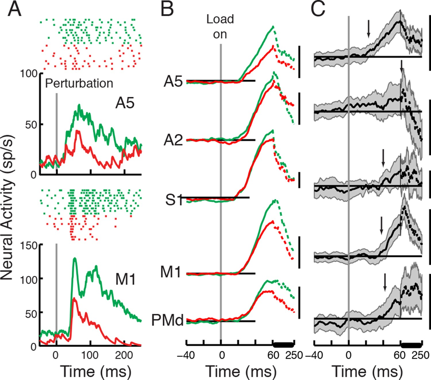 Distributed Task Specific Processing Of Somatosensory Feedback For Dc Wiring Diagram Atlas Point Motor Perturbation Responses Compared Across The Posture And Movie Tasks