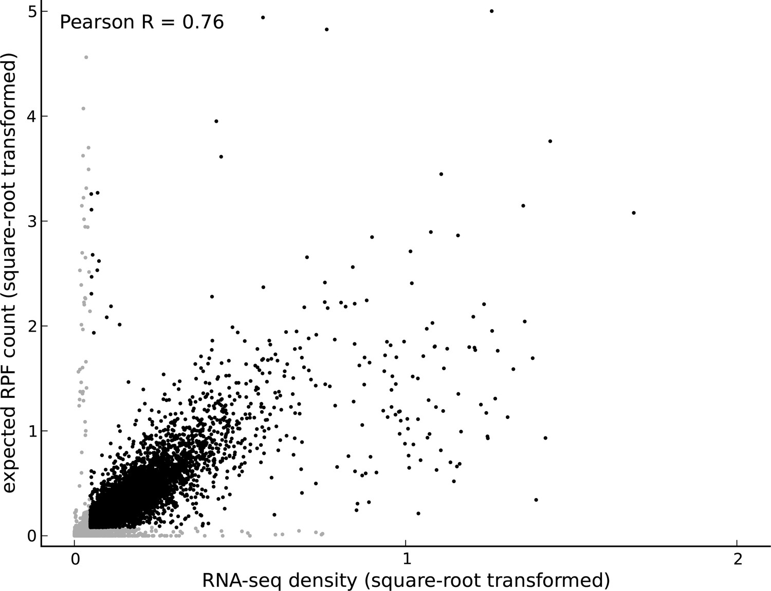 Thousands of novel translated open reading frames in humans inferred ...