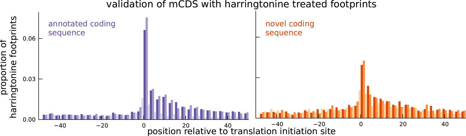 Thousands of novel translated open reading frames in humans