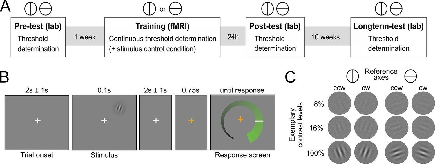 Mesolimbic Confidence Signals Guide Perceptual Learning In The Envelope Detector One Circuit A Week Experimental Design