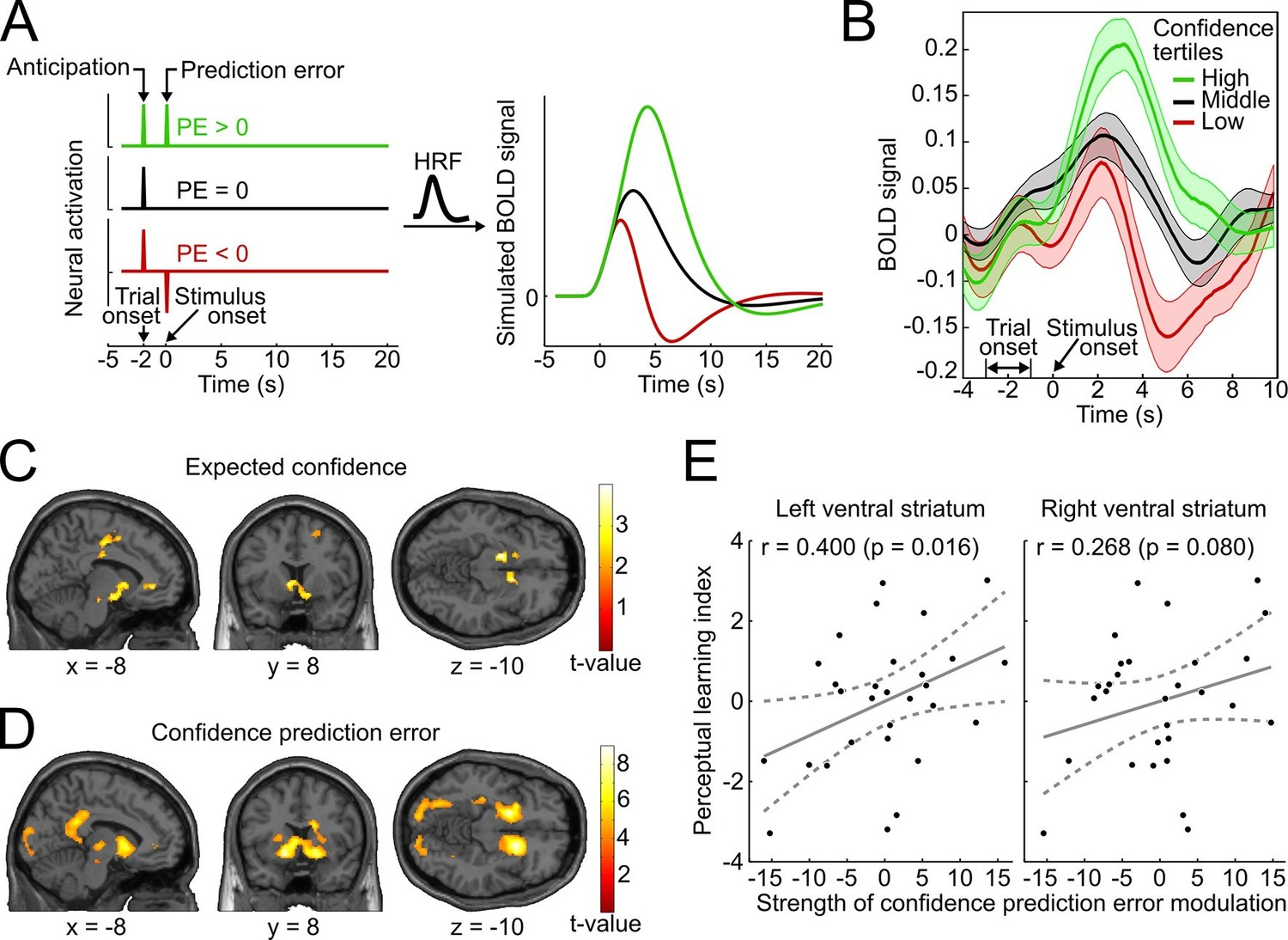 Mesolimbic Confidence Signals Guide Perceptual Learning In The Supplemental Instruction Learn How To Troubleshoot Plc Circuits System And Their Relation