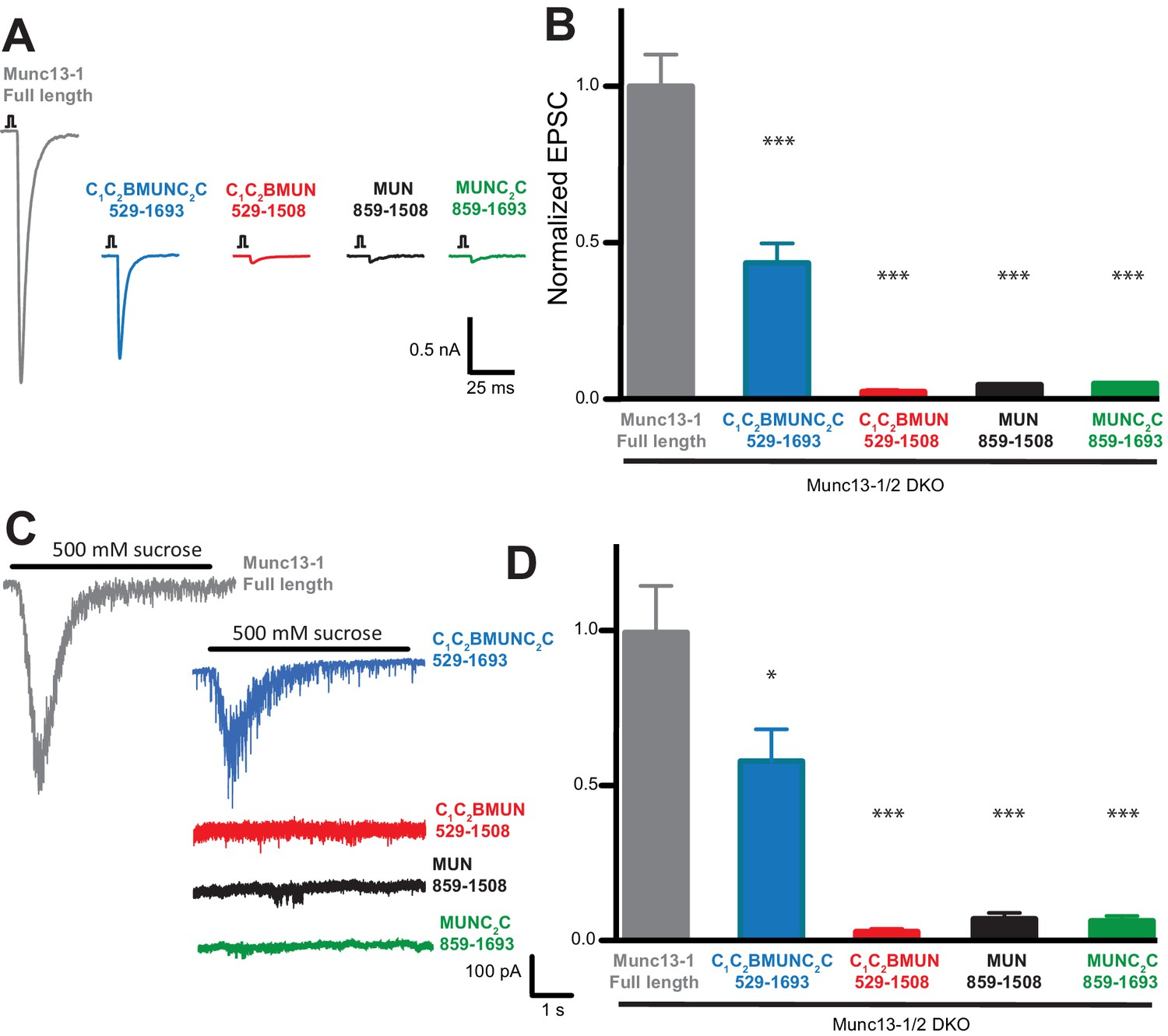 Functional Synergy Between The Munc13 C Terminal C1 And C2 Domains No Disassemble Johnny 5is Alive 1 C2b C2c Are Critical For Neurotransmitter Release