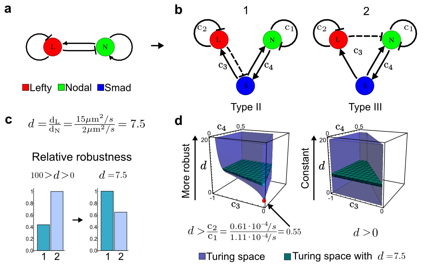 High Throughput Mathematical Analysis Identifies Turing Networks For Network Topology Diagram Fully Connected Modeling Of The Nodal Lefty Reaction Diffusion System With Realistic Signaling A Schematic