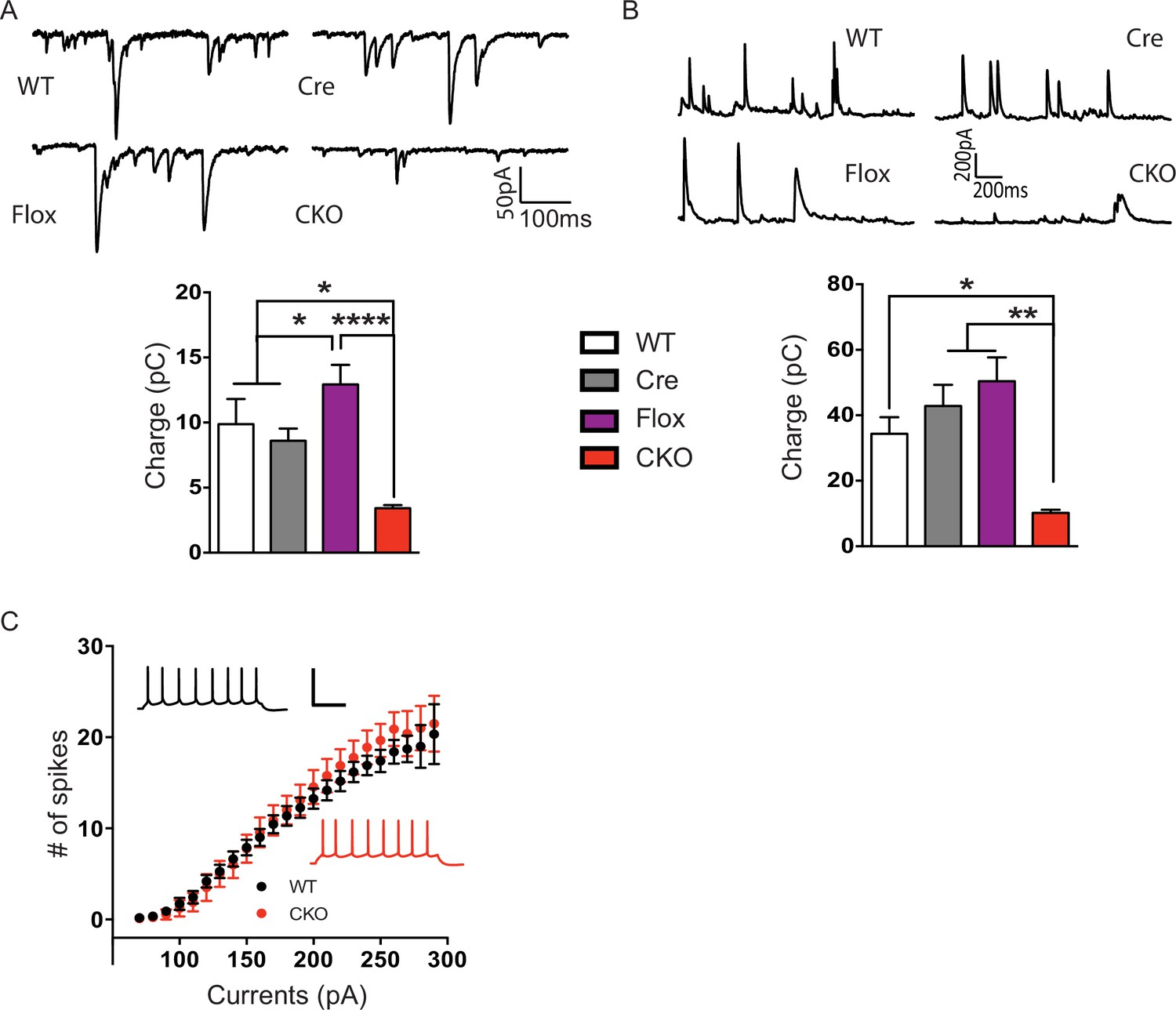 Manipulations Of Mecp2 In Glutamatergic Neurons Highlight Their Computer Mouse Management On A Success Diagram Stock Image Layer V Pyramidal The Cko Mice Received Less Excitatory And Inhibitory Input