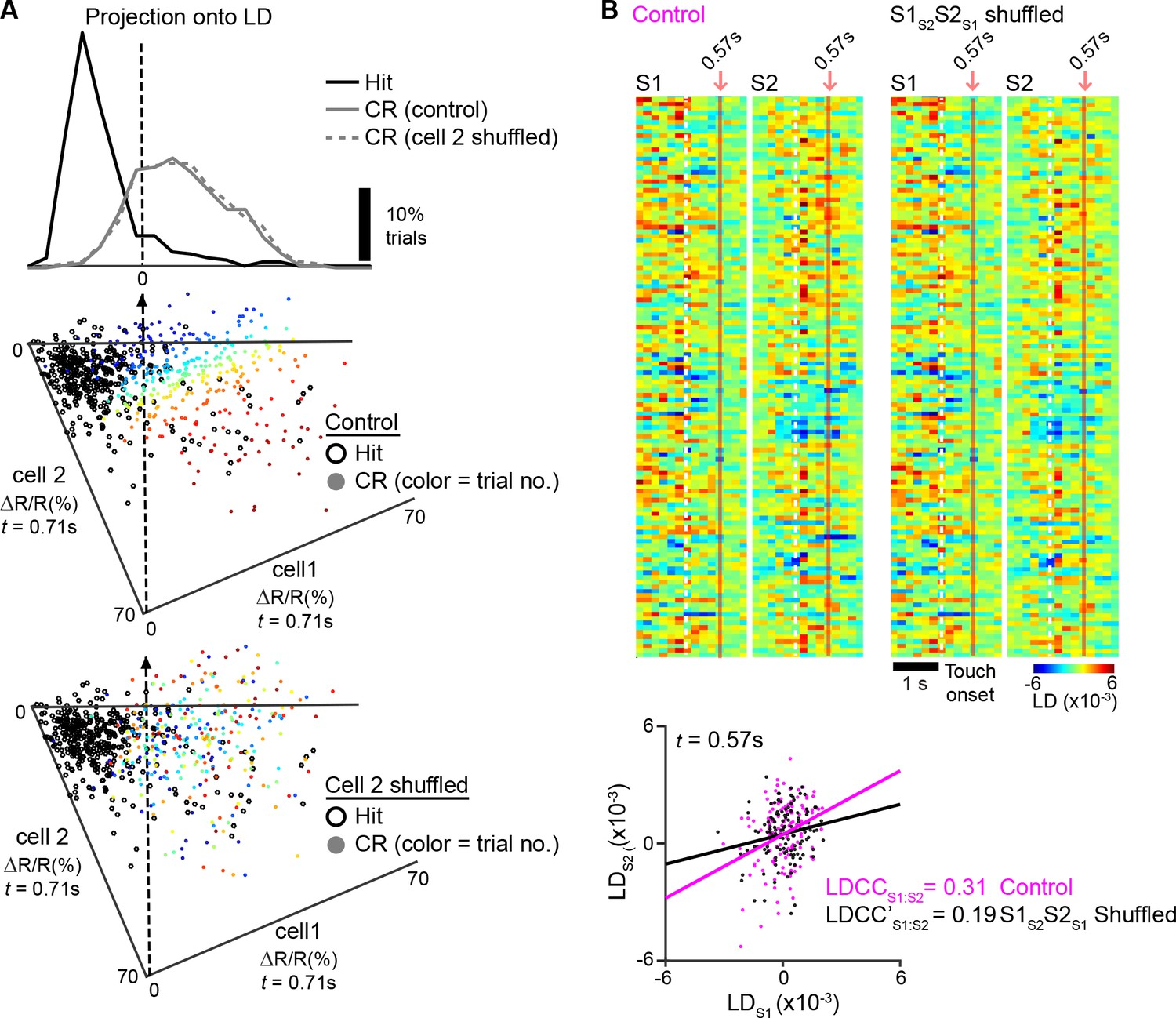 Long-range population dynamics of anatomically defined neocortical