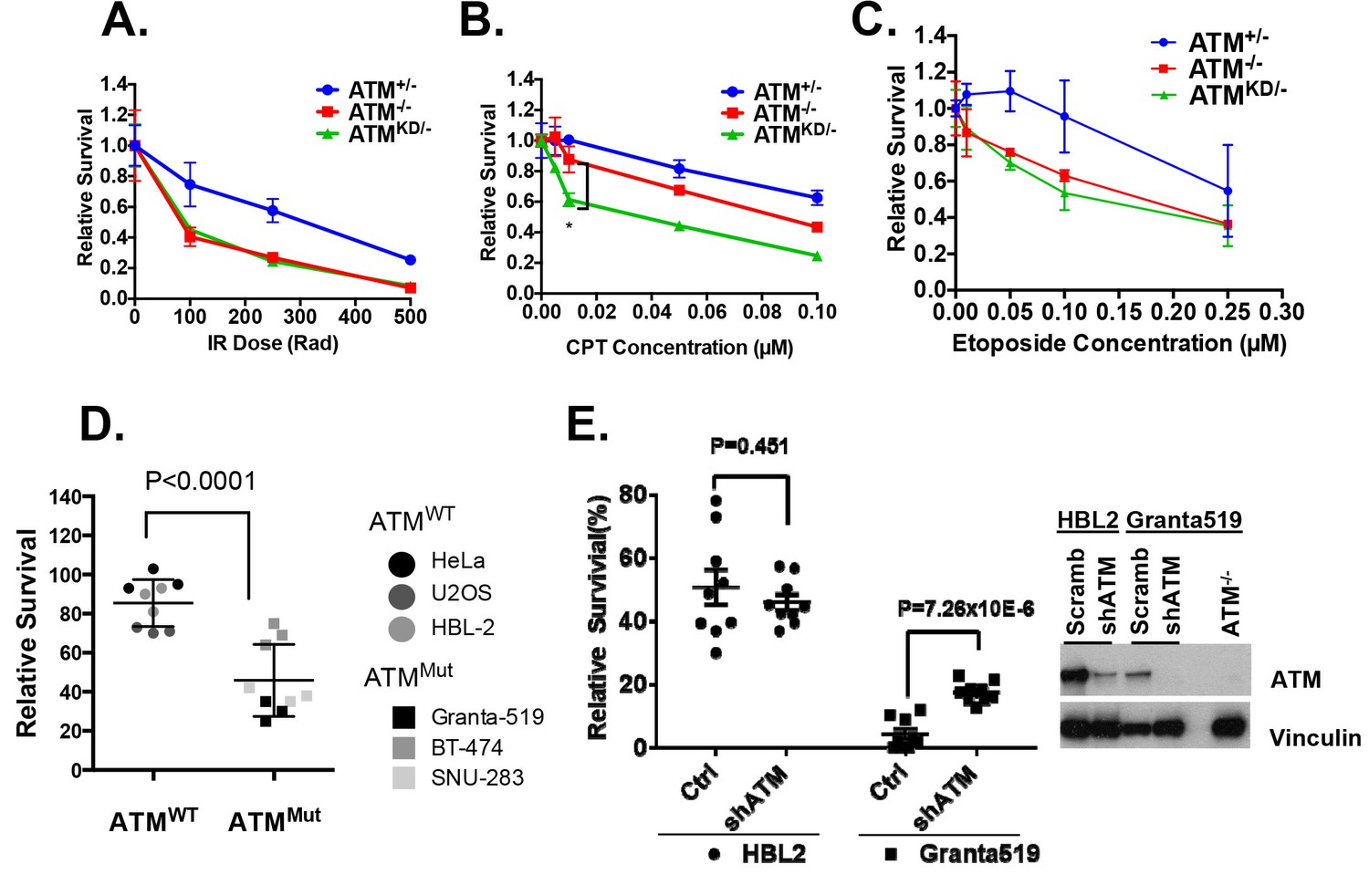 Kinase Dead Atm Protein Is Highly Oncogenic And Can Be Preferentially Targeted By Topo Isomerase I Inhibitors Elife