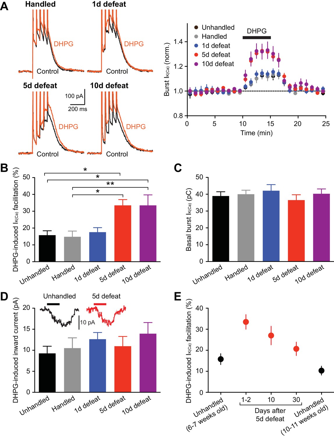 Repeated Social Defeat Stress Enhances Glutamatergic Synaptic Beat Balance Metal Detector Electronic Circuit Diagram Mglur Dependent Facilitation Of Burst Evoked Ca2 Signals Is Enhanced After