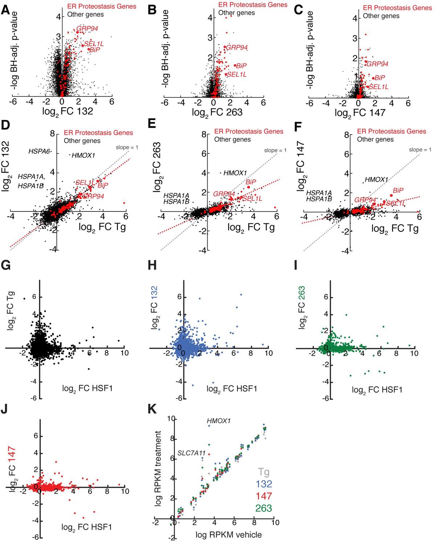 Small Molecule Proteostasis Regulators That Reprogram The Er To H 263 Block Diagram Mrna Seq Analysis Shows Do Not Globally Activate Heat Shock Response Hsr Or Oxidative Stress Pathways
