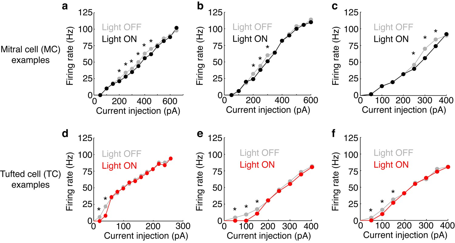 Distinct Lateral Inhibitory Circuits Drive Parallel Processing Of Circuit The Red Bars In Don39t Lower Because Examples Fi Curves With And Without Photostimulation M72