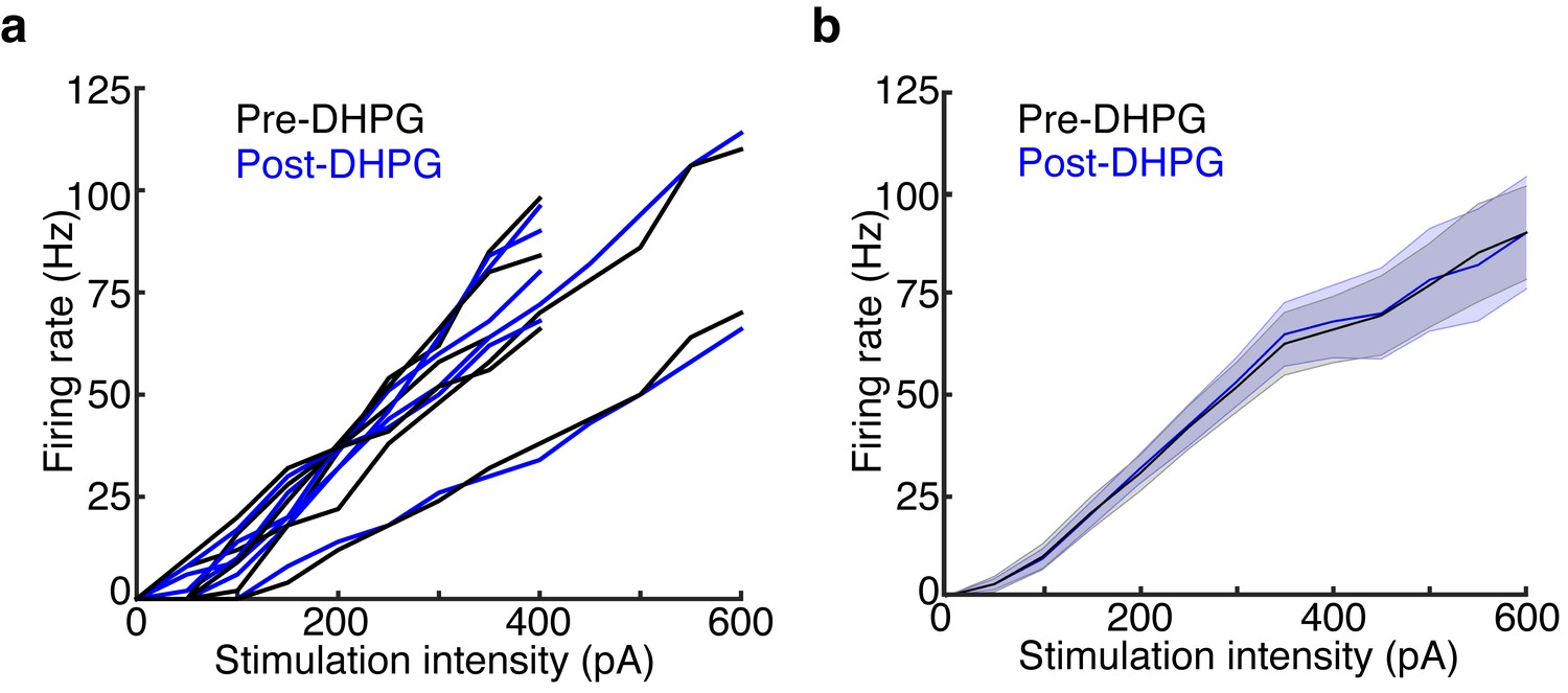 Distinct Lateral Inhibitory Circuits Drive Parallel Processing Of Circuit The Effective Charging And Firing Dhpg Has No Effect On Mc Excitability