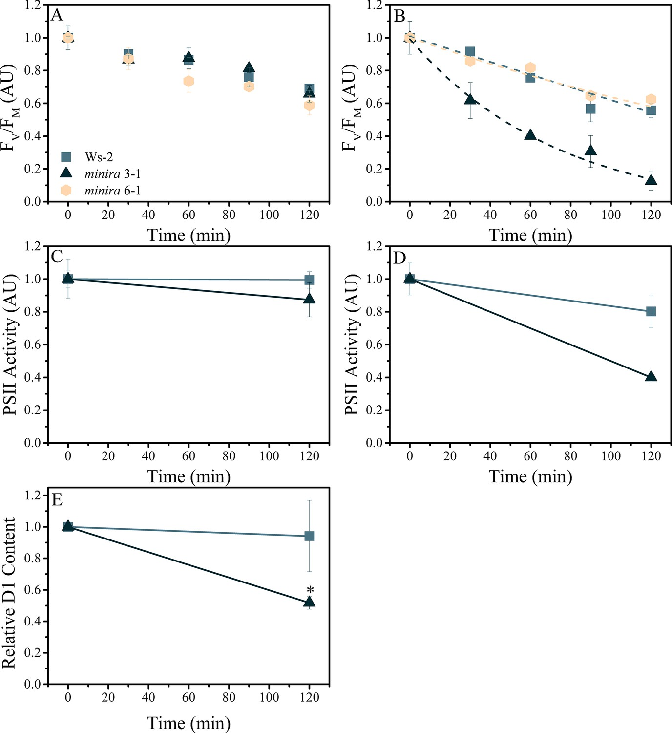 Limitations to photosynthesis by proton motive force induced