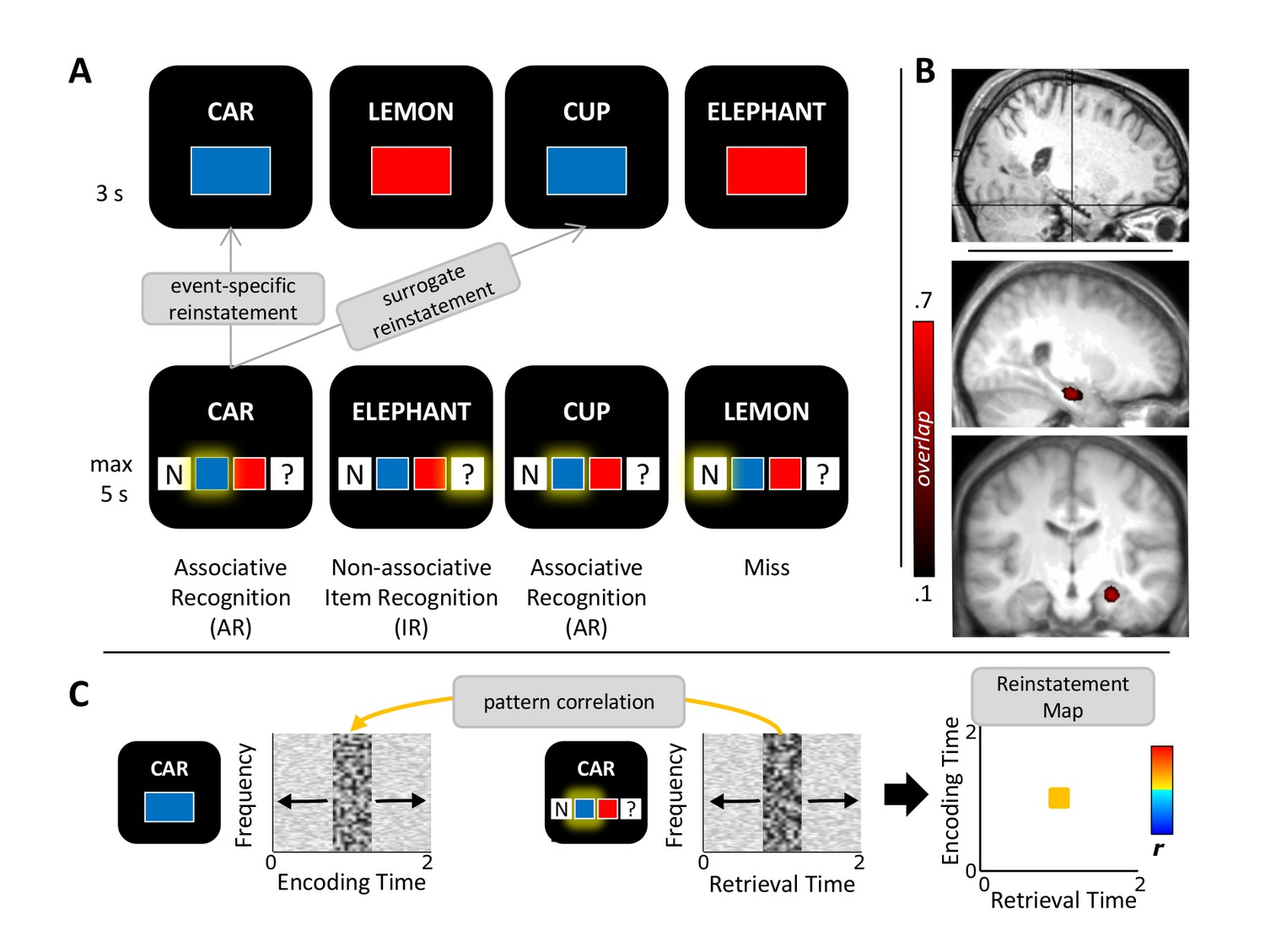 Figures and data in Hippocampal pattern completion is