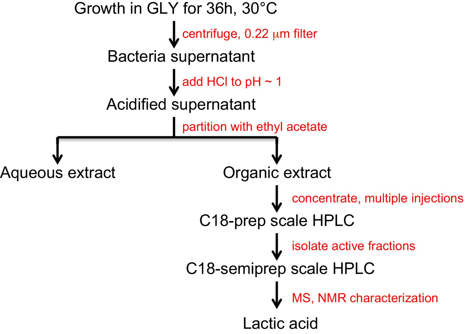 A common bacterial metabolite elicits prion-based bypass of
