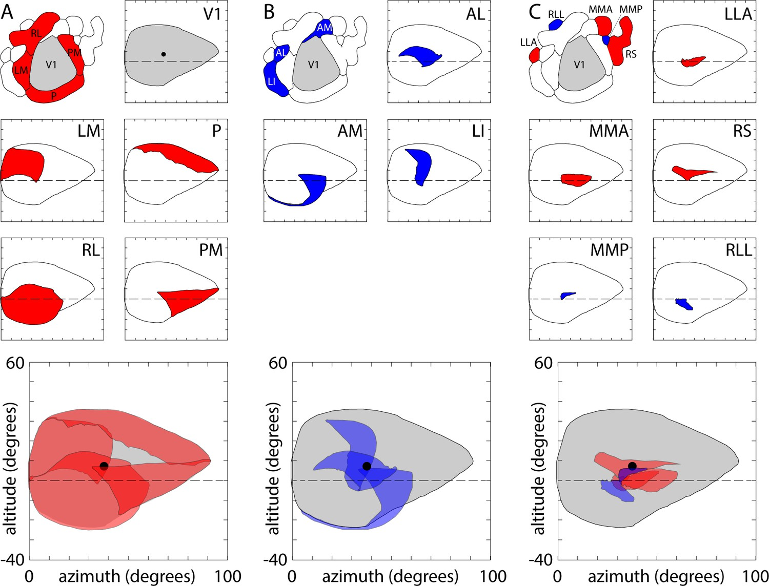 An extended retinotopic map of mouse cortex | eLife