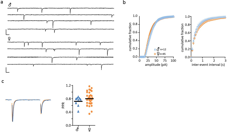 Sexually dimorphic neuronal responses to social isolation