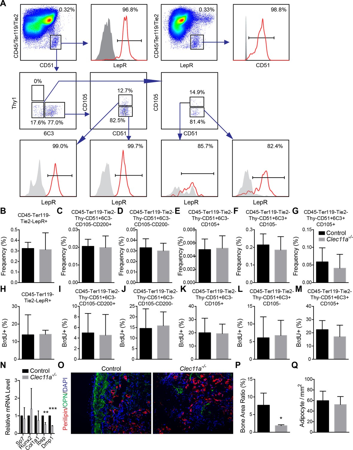 Clec11a Osteolectin Is An Osteogenic Growth Factor That Promotes The Mclaren Mt 7 Wire Diagram Analysis Of Osteoprogenitor Populations And In Vivo Transplantation Bone Marrow Stromal Cells