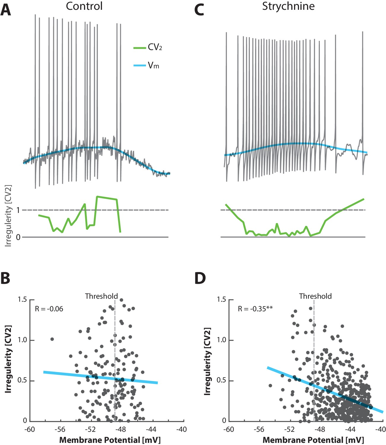 Lognormal firing rate distribution reveals prominent fluctuation