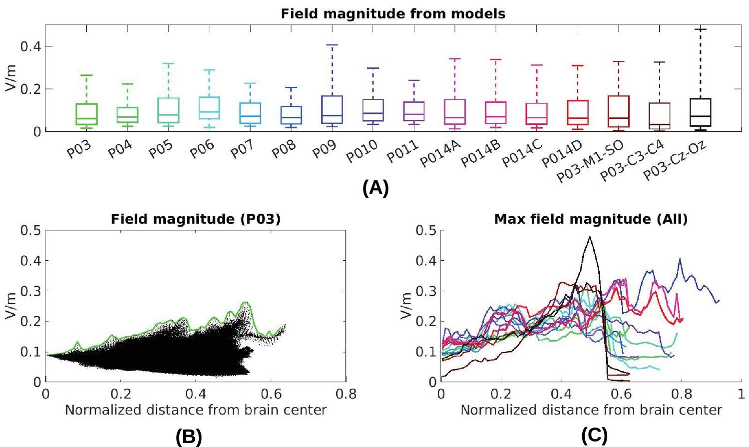 Measurements and models of electric fields in the in vivo