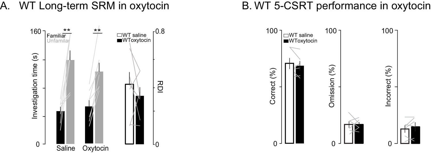 Oxytocin improves behavioral and electrophysiological deficits in a