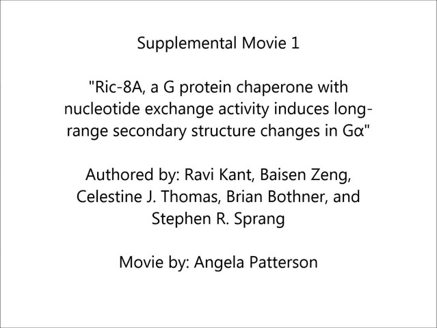 Nieuw Ric-8A, a G protein chaperone with nucleotide exchange activity FO-93