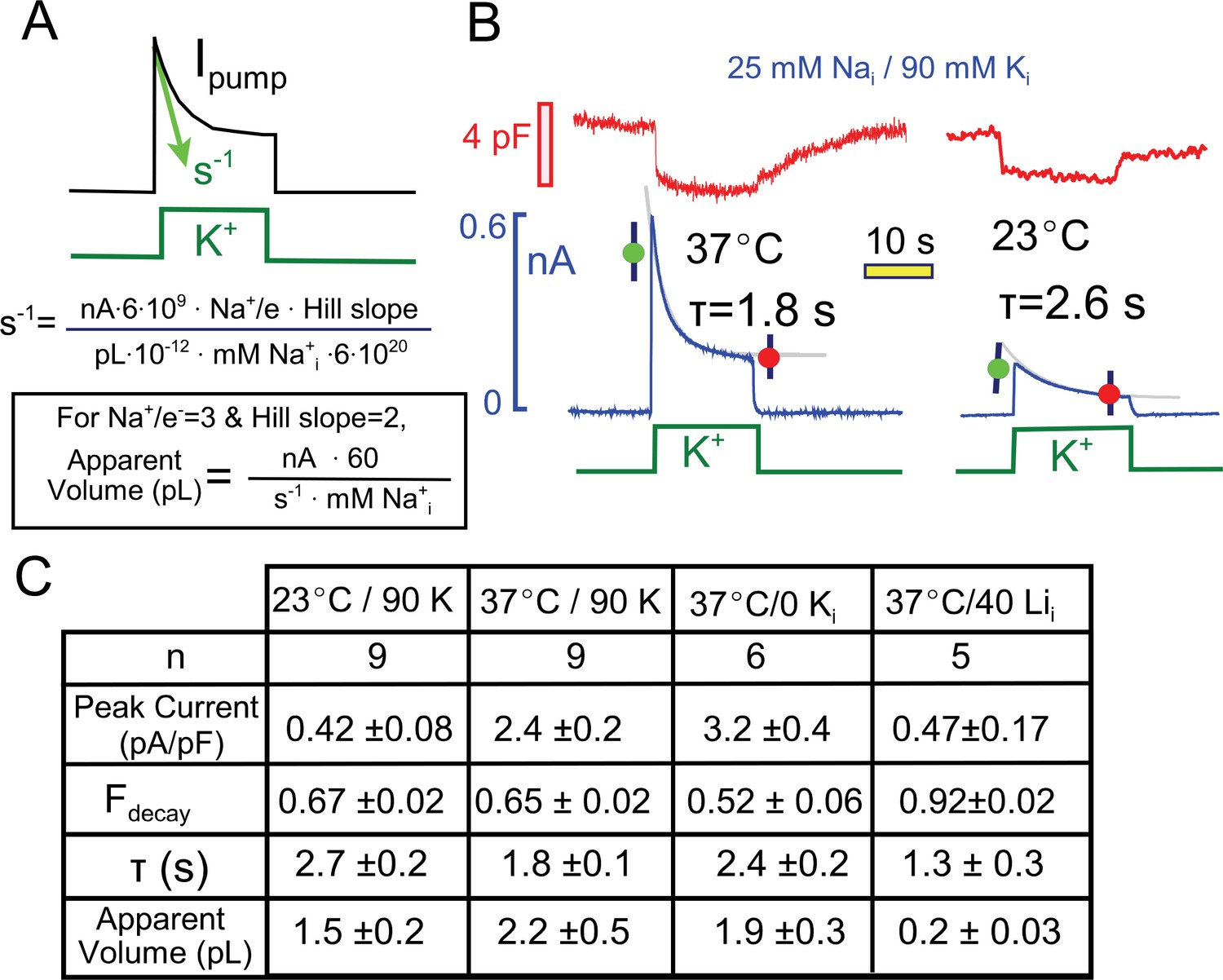 quantitative analysis of pump current decay in relation to predictions for  cytoplasmic na depletion