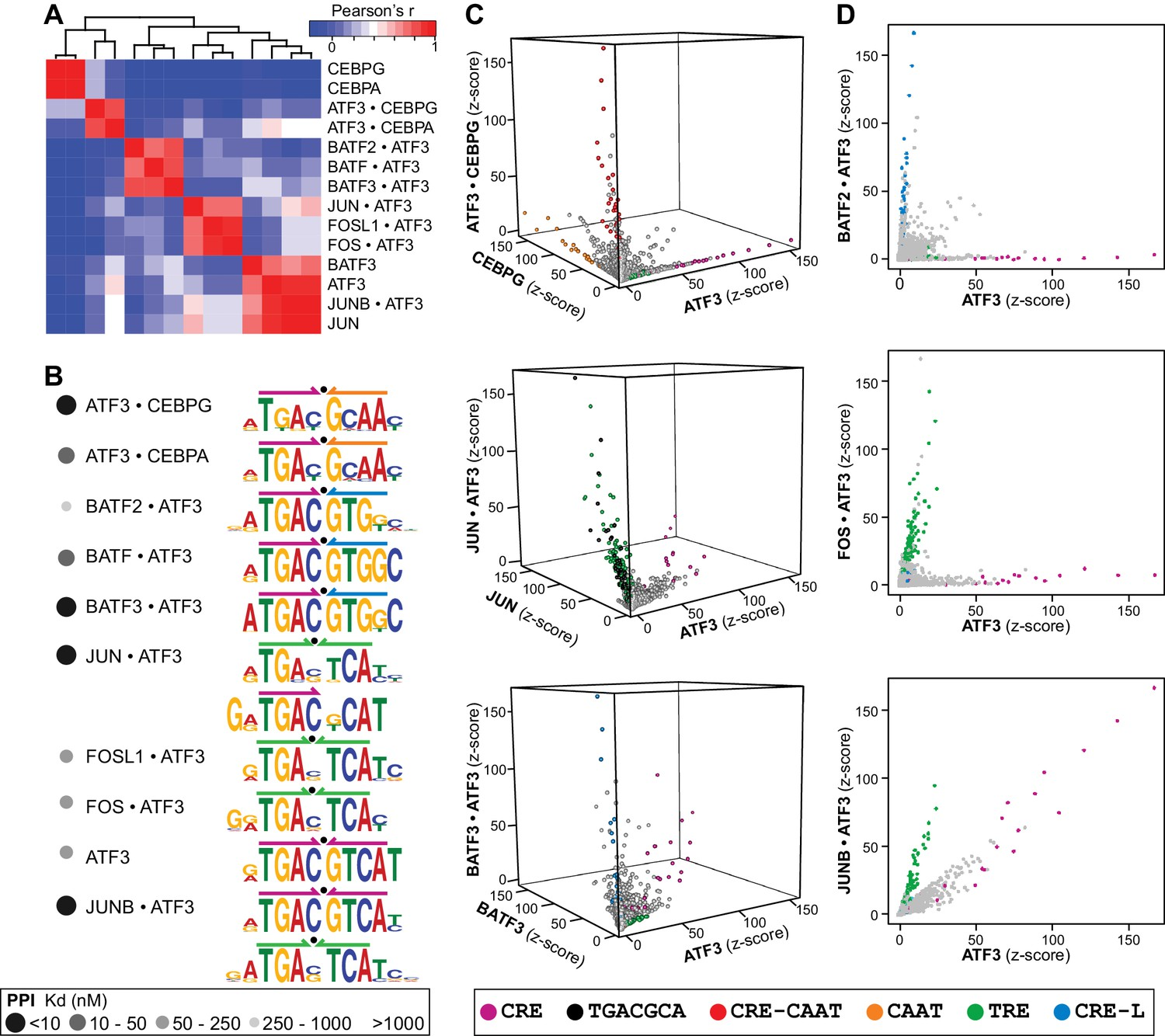 Combinatorial Bzip Dimers Display Complex Dna Binding Specificity L I Electrical Plan Review Atf3 Heterodimers Bind A Range Of Distinct Cognate Sites