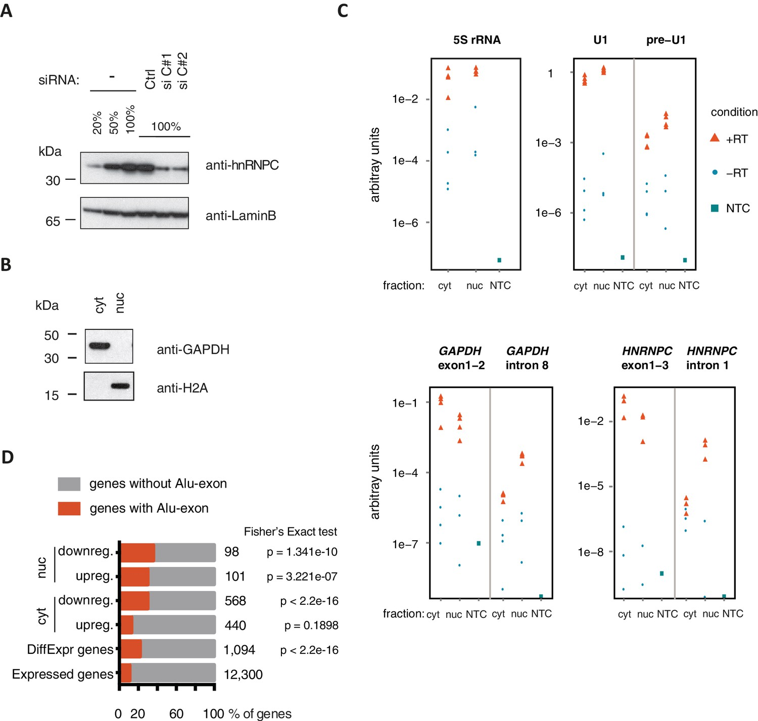 Splicing Repression Allows The Gradual Emergence Of New Alu Exons In Besides Telephone Phone Line Wiring Diagram Moreover How To Splice Cat Quality Control Cytoplasmic And Nuclear Rna Fractions