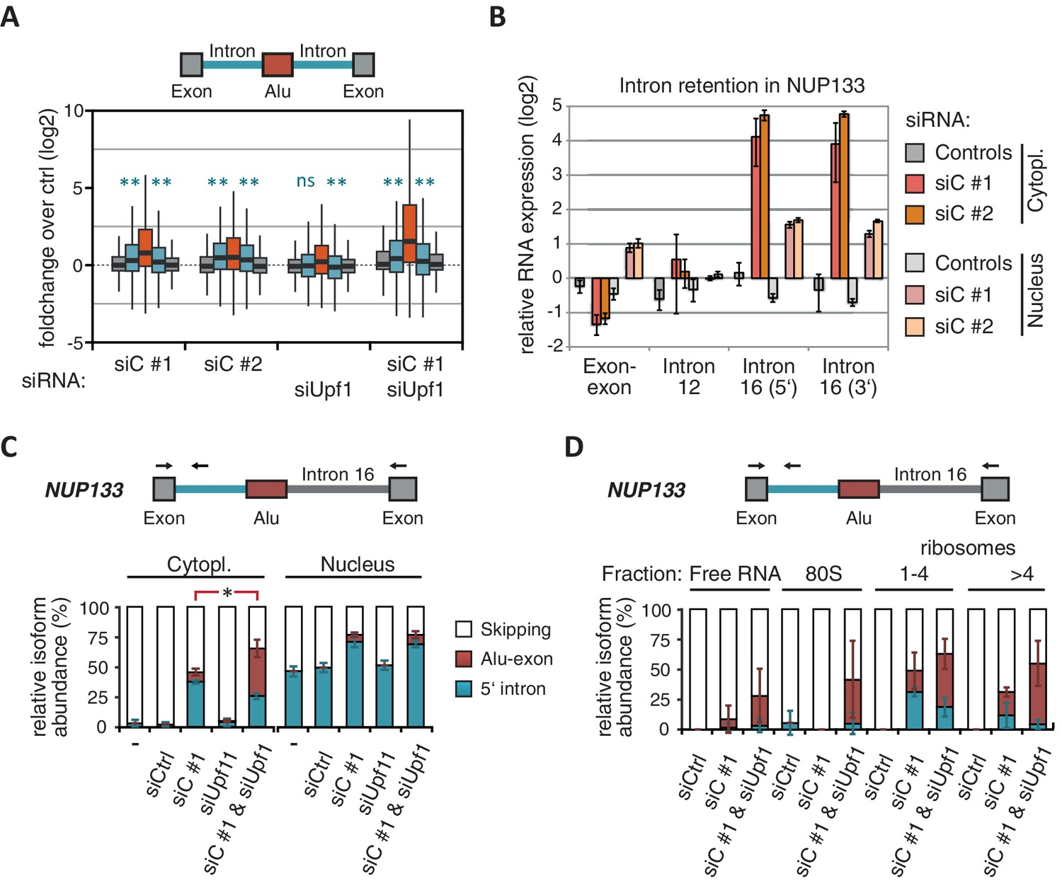 Splicing Repression Allows The Gradual Emergence Of New Alu Exons In Besides Telephone Phone Line Wiring Diagram Moreover How To Splice Cat Nmd Refractory Transcripts Are Cytoplasmic And Polysome Associated