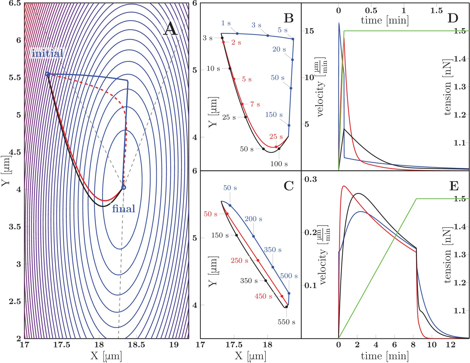 Axon Tension Regulates Fasciculation Defasciculation Through The Diagram Moreover Dip Switch Settings In Addition Cat 5 Crossover Cable Predicted Zippering Dynamics Resulting From Applying A Perturbation To Zipper Initially Equilibrium Converging New