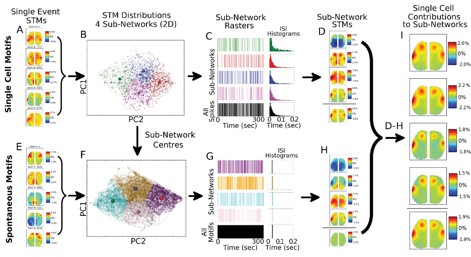 Mapping Cortical Mesoscopic Networks Of Single Spiking Or Subwoofer Wiring Diagram For 2005 Ford F 150 Spike Motifs Sub Grouping Reveals Similar Stms Across