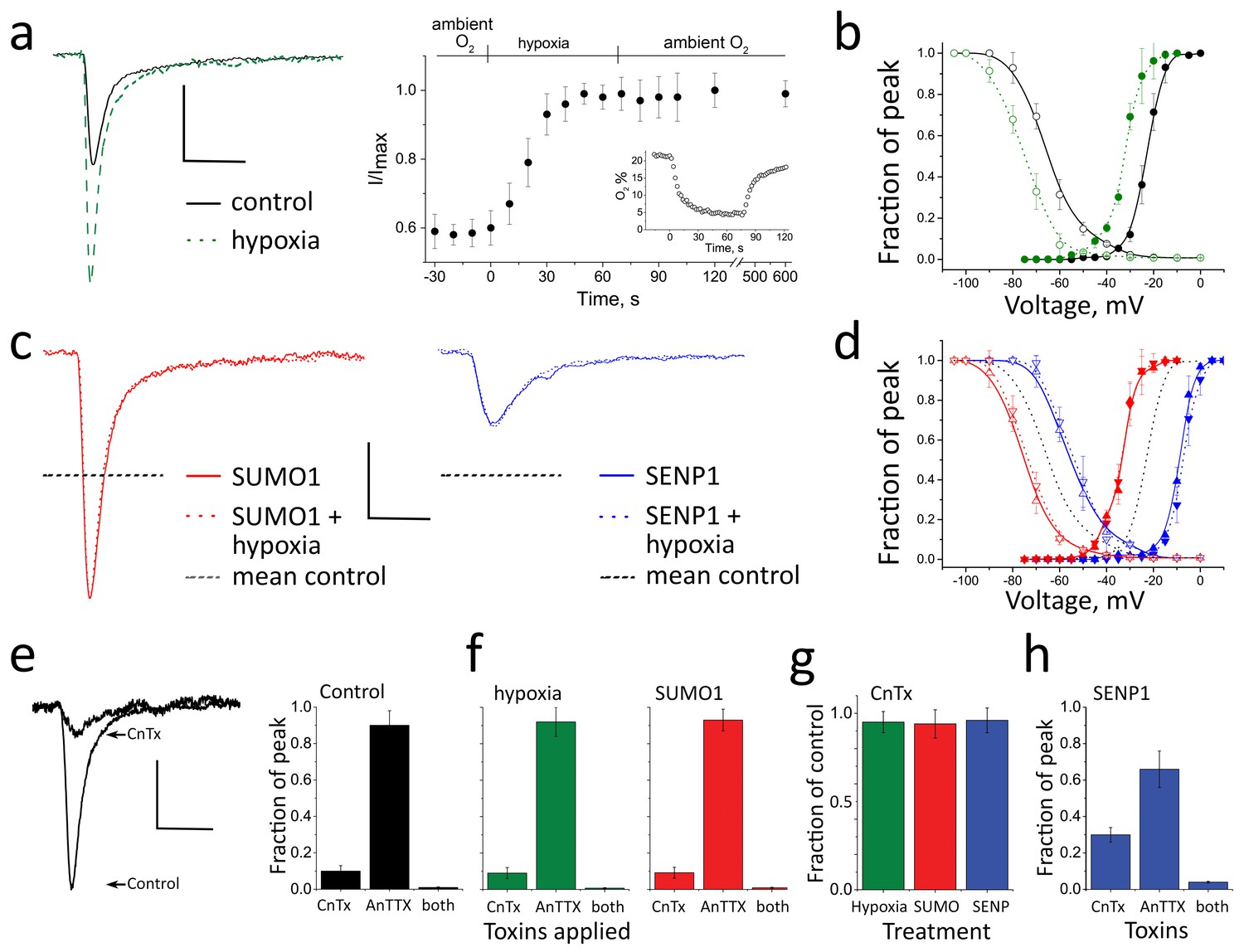 Sumoylation Of Nav12 Channels Mediates The Early Response To Acute Still Diagram Rectifying Plant For Purifying Hypoxia And Sumo1 Augment Ina In Rat Cgn