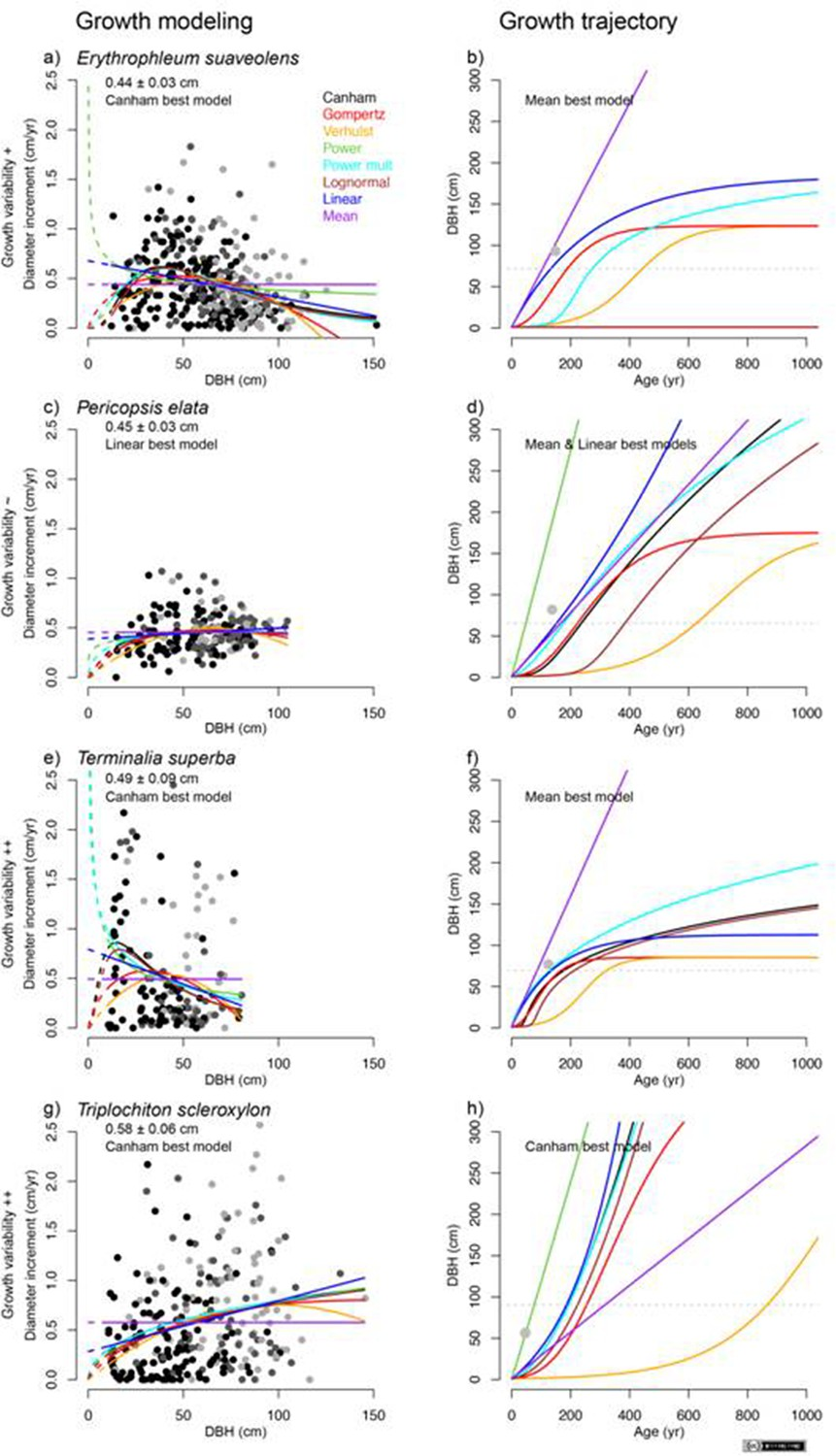 Present Day Central African Forest Is A Legacy Of The 19th Century Thinning Tree Ring Diagram Growth Models C E And G Trajectories B D F H For Four Study Species Based On Data
