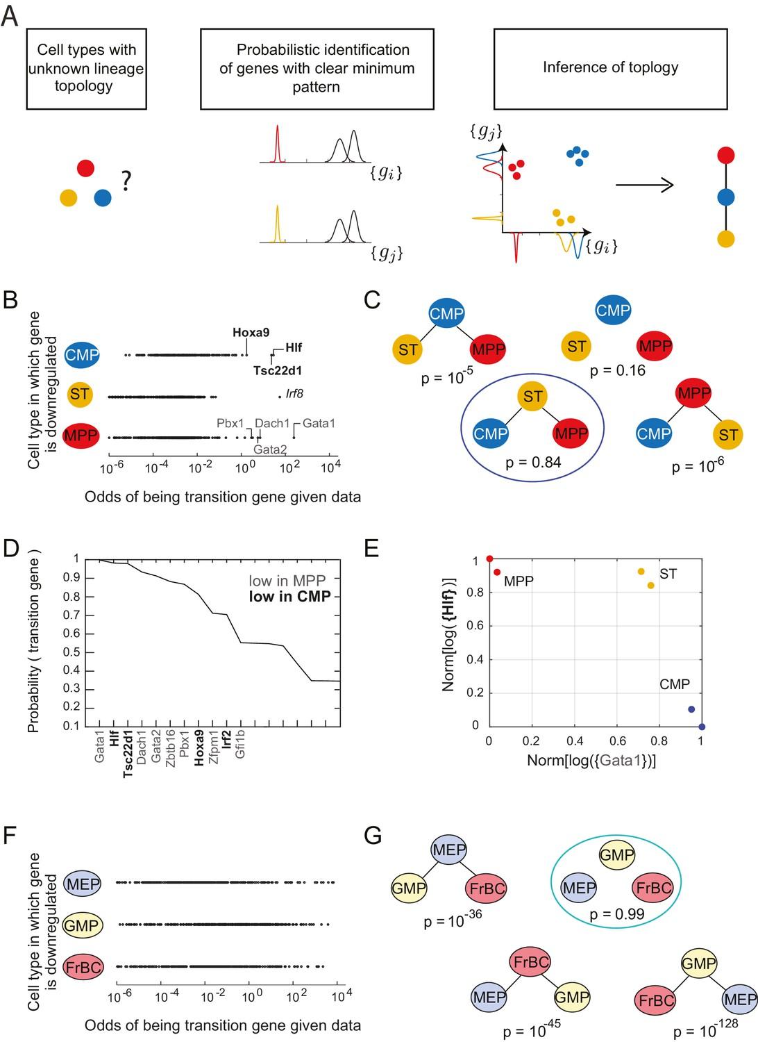 Discovering sparse transcription factor codes for cell