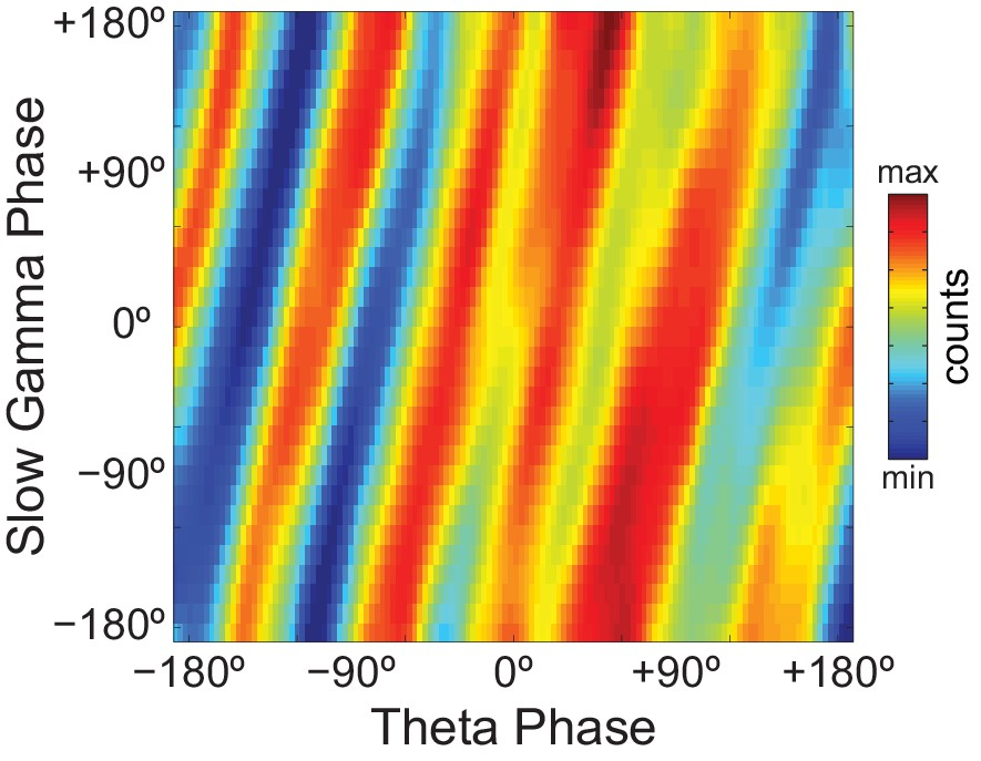 On Cross Frequency Phase Phase Coupling Between Theta And