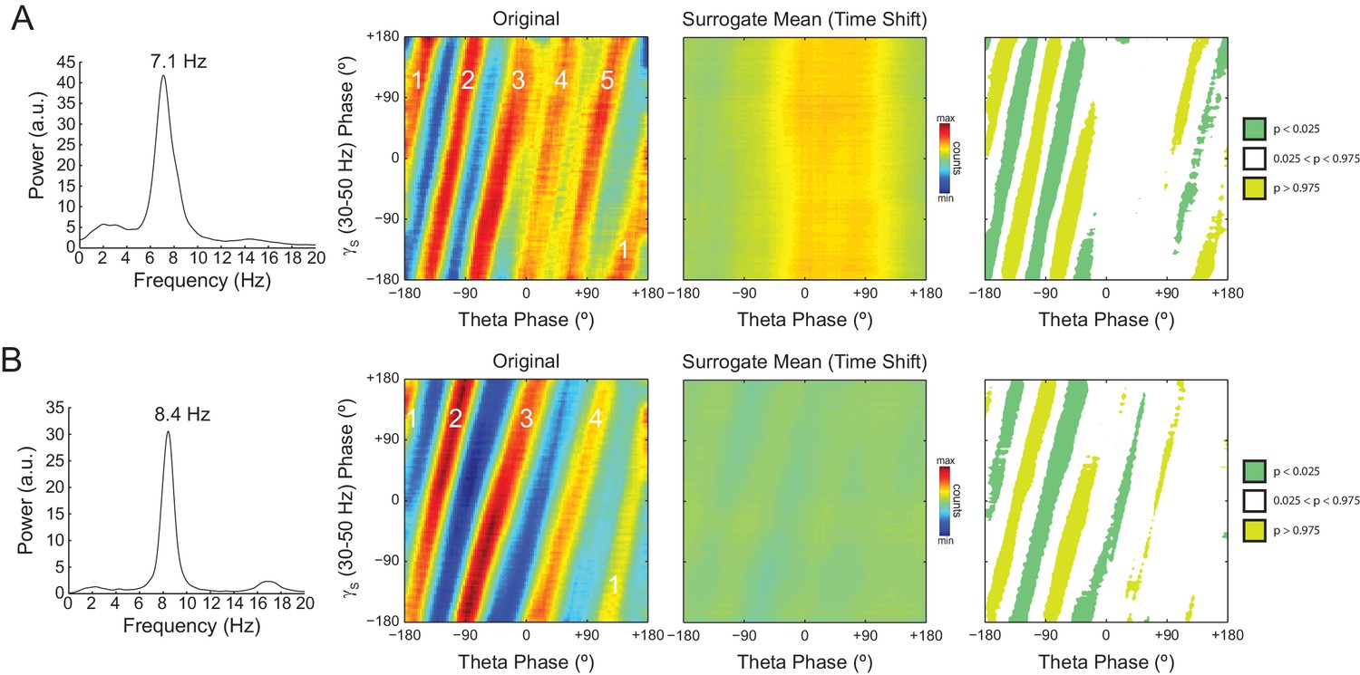 On cross-frequency phase-phase coupling between theta and