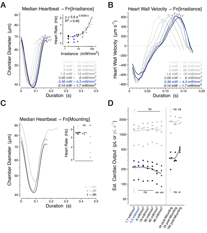 Age-dependent diastolic heart failure in an in vivo Drosophila model