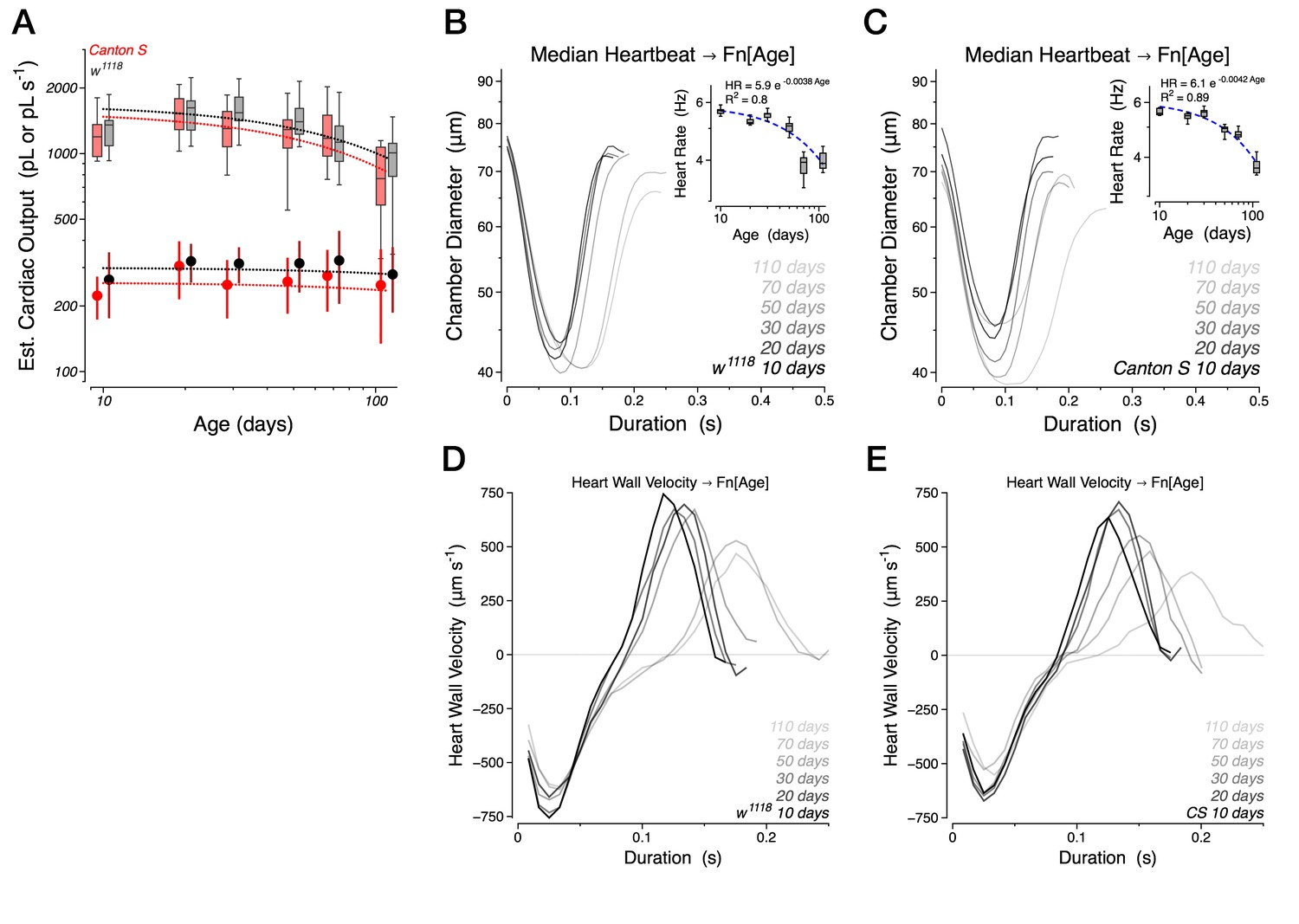 Age Dependent Diastolic Heart Failure In An Vivo Drosophila Model Aa One K A Compact Current Voltage Output Integrated Amplifier Https Doiorg 107554 Elife20851025