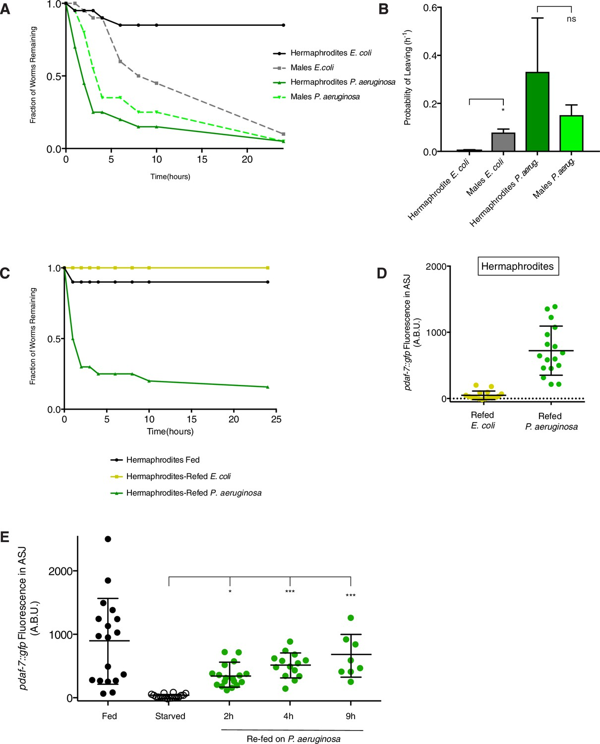 Sexually dimorphic control of gene expression in sensory neurons ...