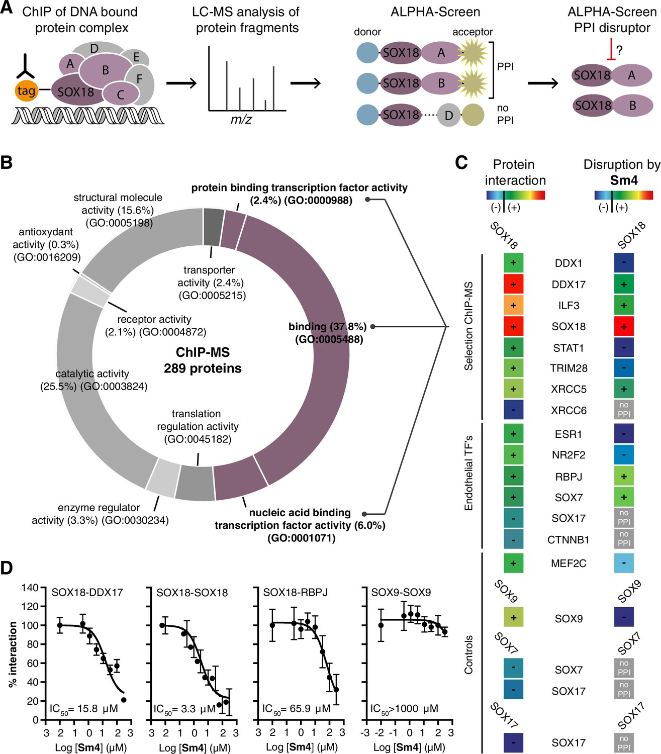 Pharmacological Targeting Of The Transcription Factor