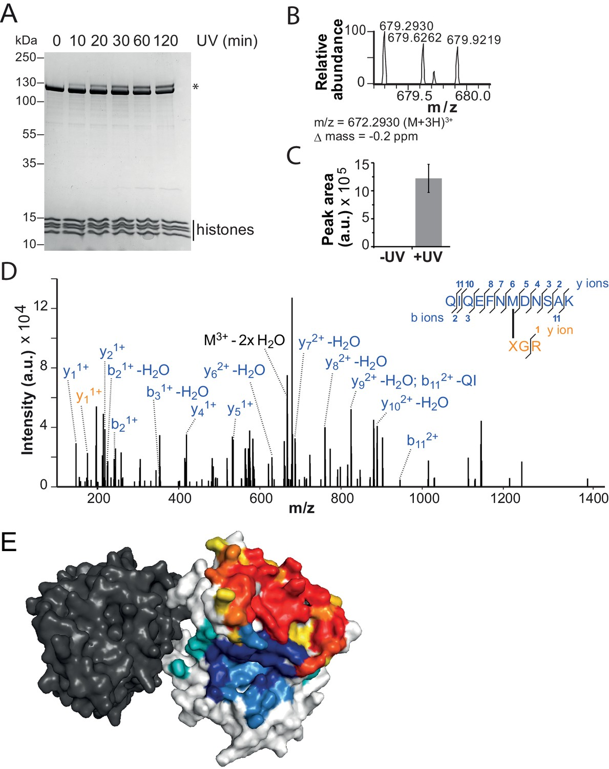 Concerted regulation of ISWI by an autoinhibitory domain and the H4