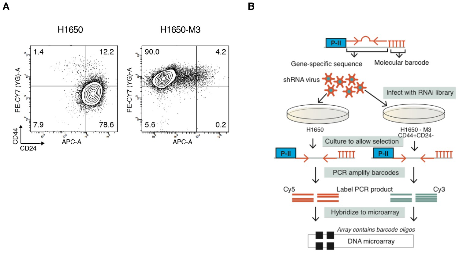 Tgf Reduces Dna Ds Break Repair Mechanisms To Heighten Genetic Aug Capacity Draw Schematics Title Bar And Youll Be Forward Screen Performed In H1650 M3 Cell Lines