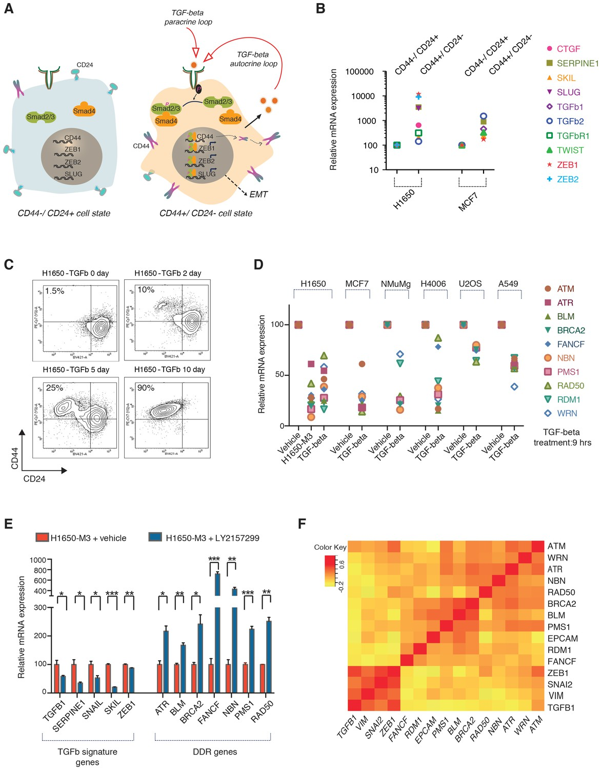 Tgf Reduces Dna Ds Break Repair Mechanisms To Heighten Genetic Sp Reguler Axis Hitz The Controls Expression Of Hdr Genes That Are Downregulated In Cd44 Cd24 Cells