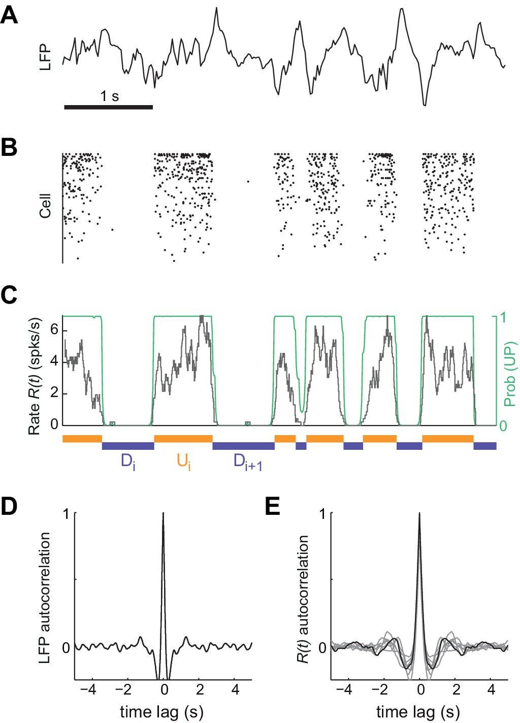 Up Down Cortical Dynamics Reflect State Transitions In A Bistable Counter 4 Bit Timing Diagram Synchronized Brain Activity Under Urethane Anesthesia The Rat Somatosensory Cortex And Detection Of Putative Periods