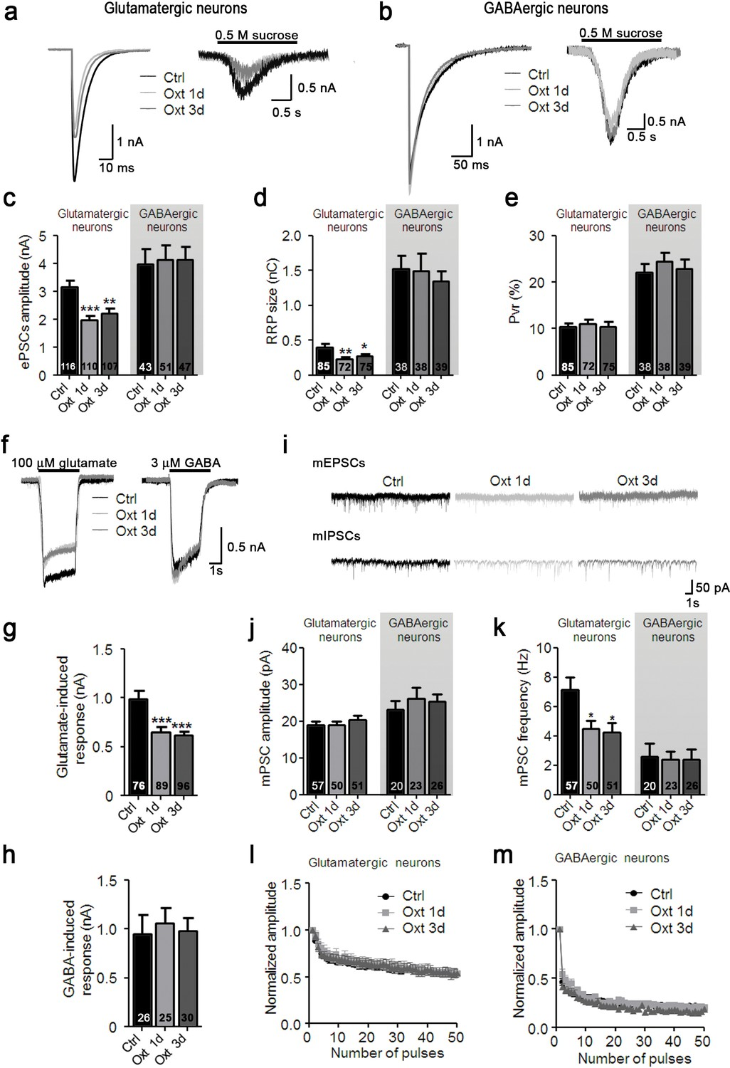 Transient Oxytocin Signaling Primes The Development And Function Of Worthington C Wiring Diagram Oxt Treatment Reduces Evoked Spontaneous Glutamatergic Synaptic Transmission In Autaptic Hippocampal Neurons