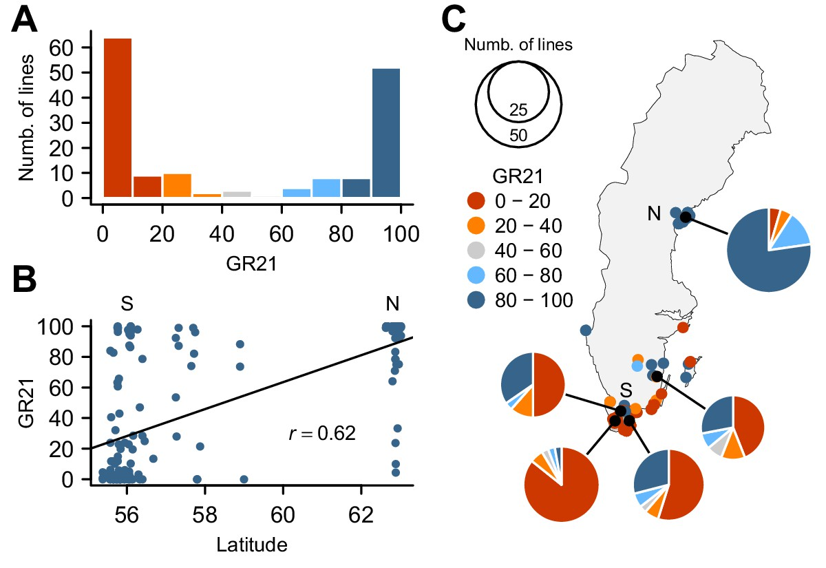 Multiple alleles at a single locus control seed dormancy in Swedish