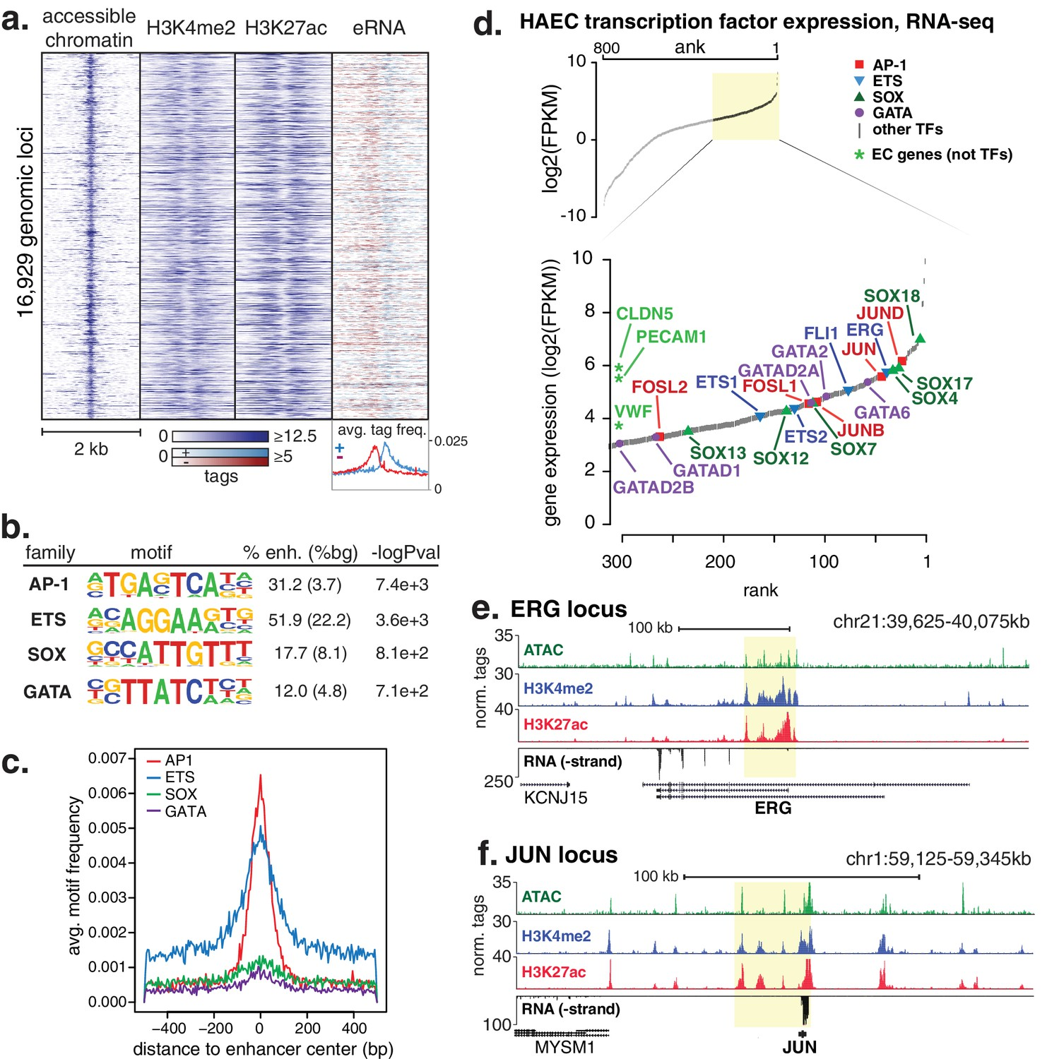 Transcriptional Networks Specifying Homeostatic And Inflammatory Attached Files Image 3 Jpg File Size 107 5 Kb Views Haecs Display A Distinct Repertoire Of Enhancers That Nominate Combinations The Ap1 Ets Sox Gata Tf Families As Major Orchestrators Haec Gene