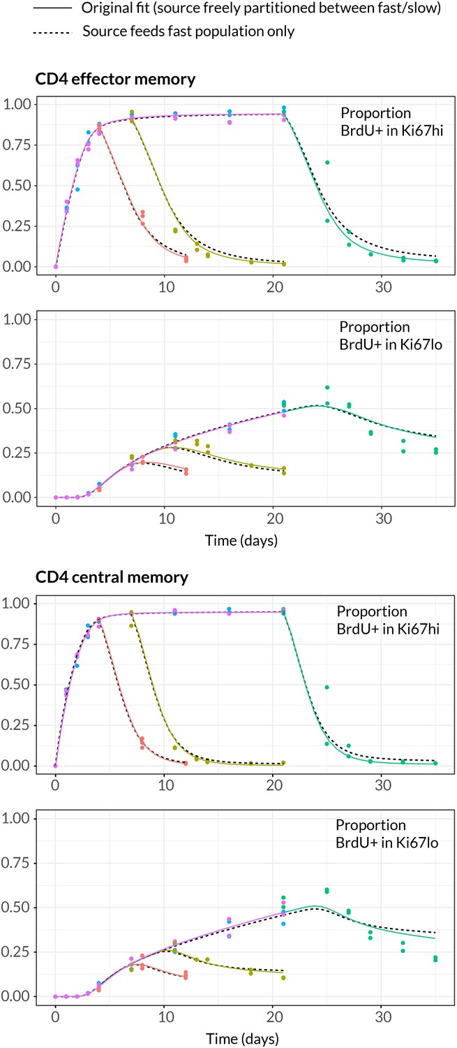 Memory CD4 T cell subsets are kinetically heterogeneous and