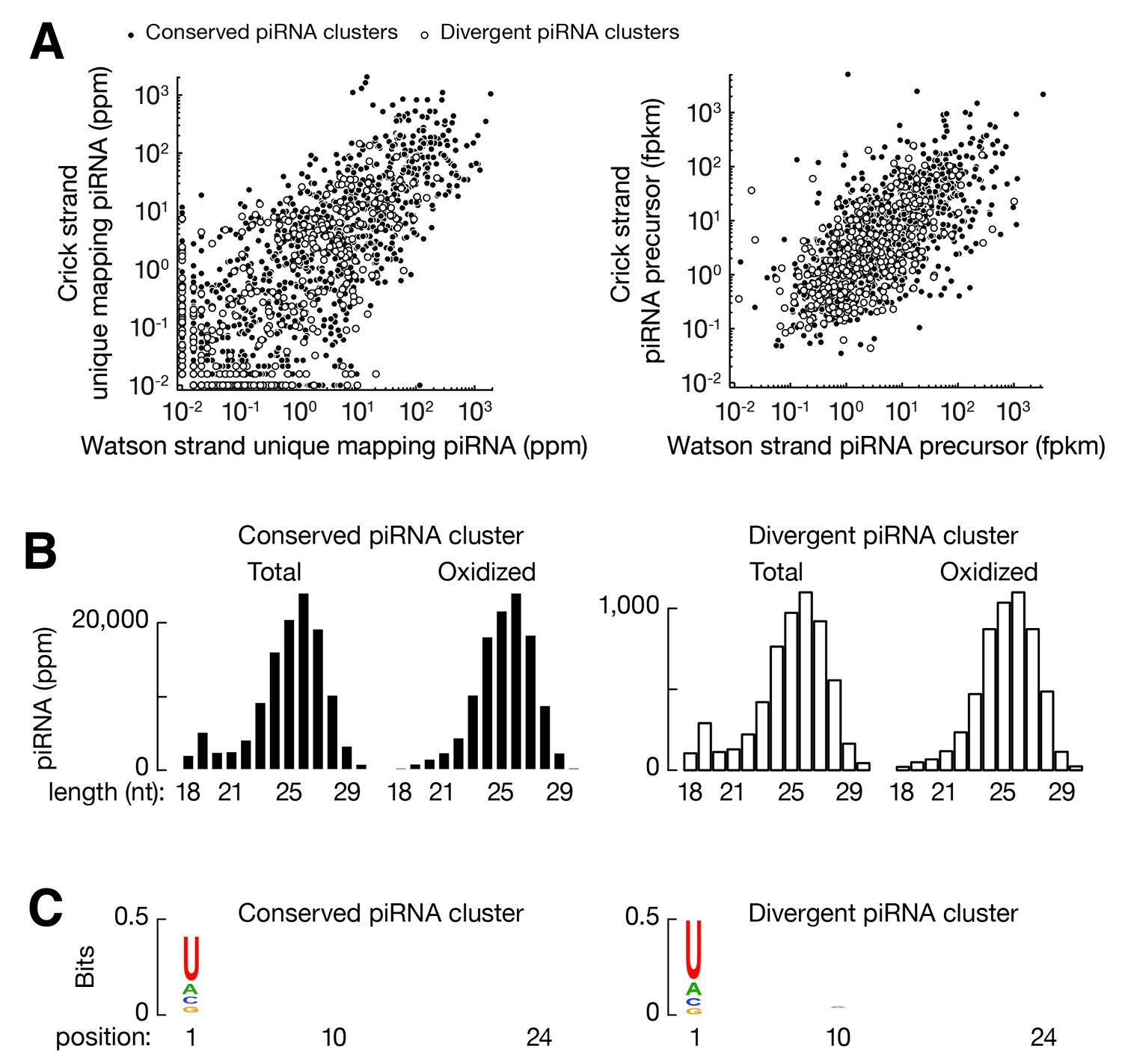 figures and data in domestic chickens activate a pirna